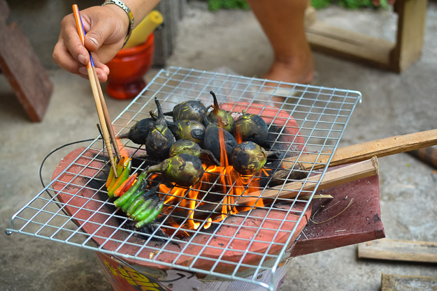 2014-05-02 food from Northern Laos by Melissa Crossett-7
