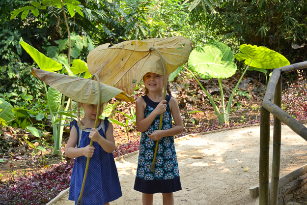 2015-03-17 Luang Prabang butterfly park by Melissa Crossett (17 of 17)