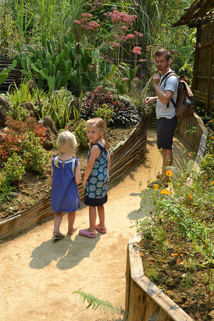 2015-03-17 Luang Prabang butterfly park by Melissa Crossett (2 of 17)