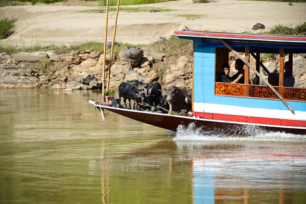 2015-06-08 mekong river cruise by Melissa Crossett (11 of 62)