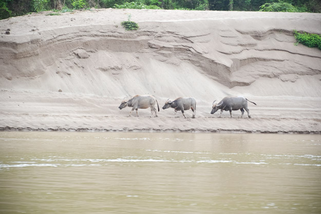 2015-06-08 mekong river cruise by Melissa Crossett (50 of 62)