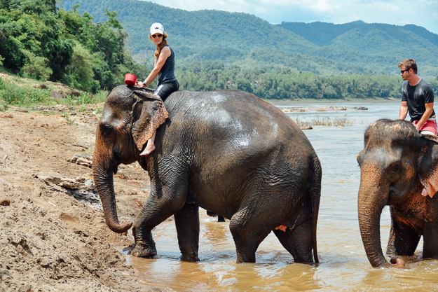 2015-09-21 elephant riding with kids in Luang Prabang by Melissa Crossett (14 of 25)