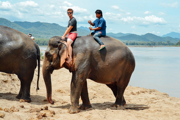 2015-09-21 elephant riding with kids in Luang Prabang by Melissa Crossett (15 of 25)