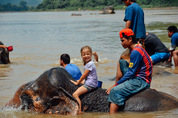 2015-09-21 elephant riding with kids in Luang Prabang by Melissa Crossett (16 of 25)