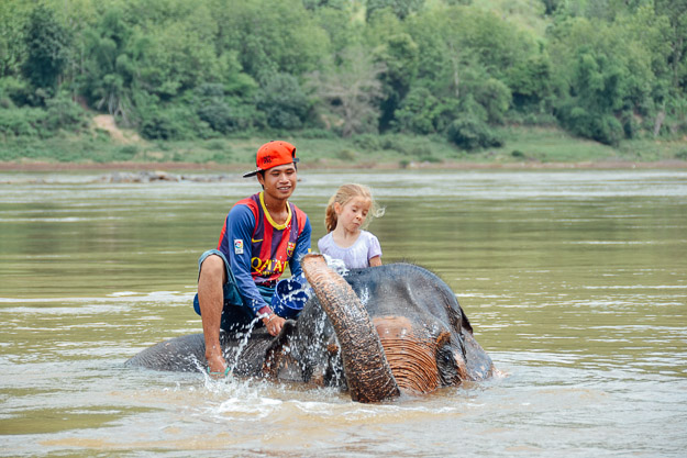 2015-09-21 elephant riding with kids in Luang Prabang by Melissa Crossett (17 of 25)
