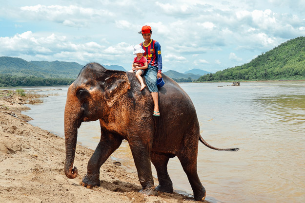 2015-09-21 elephant riding with kids in Luang Prabang by Melissa Crossett (24 of 25)