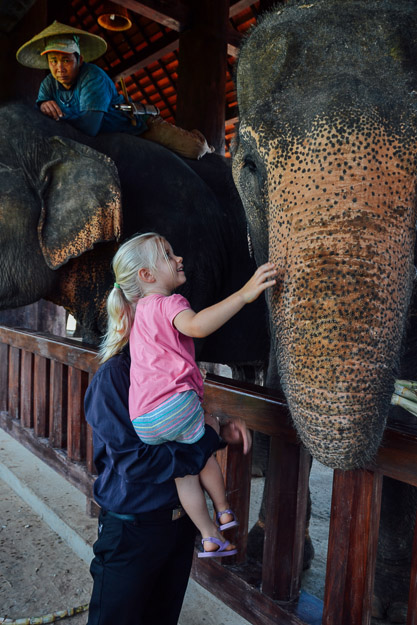 2015-09-21 elephant riding with kids in Luang Prabang by Melissa Crossett (3 of 25)