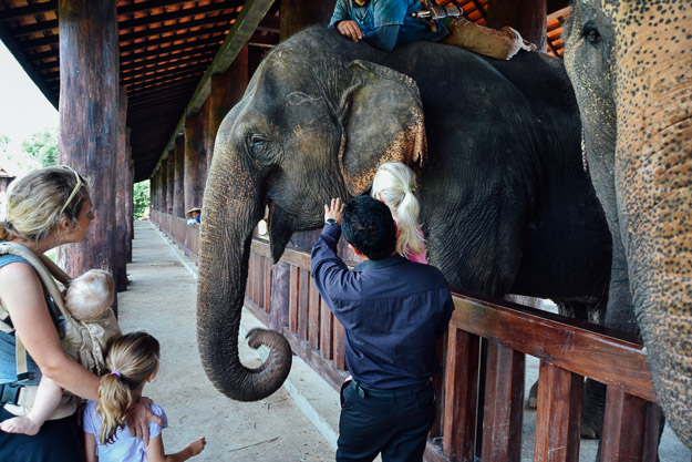 2015-09-21 elephant riding with kids in Luang Prabang by Melissa Crossett (4 of 25)