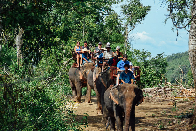 2015-09-21 elephant riding with kids in Luang Prabang by Melissa Crossett (5 of 25)